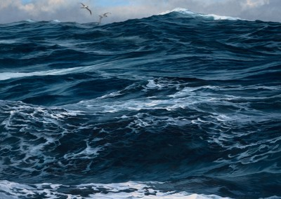 Deep Ocean Waves and Sooty Albatrosses