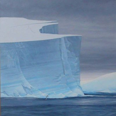 Giant Petrels and Iceberg