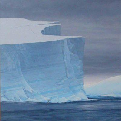 Giant Petrels and Iceberg