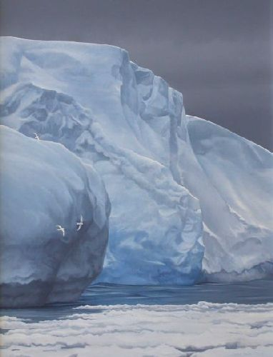 Snow Petrels and Iceberg